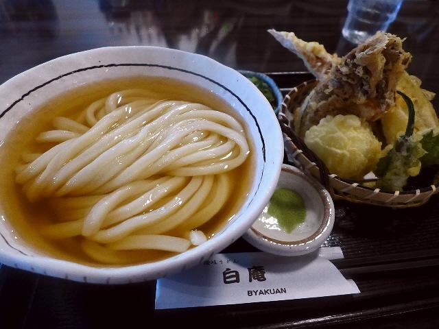 正統派いりこ出汁の旨みと強力な腰の剛麺のひやかけが最高です!  淀川区  「白庵」