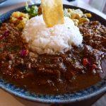 スパイスカレーのクイーンが復活!久しぶりの混ぜ混ぜカレーは感動的な美味しさです! 裏谷四  「currybar nidomi(カレーバー ニドミ)」