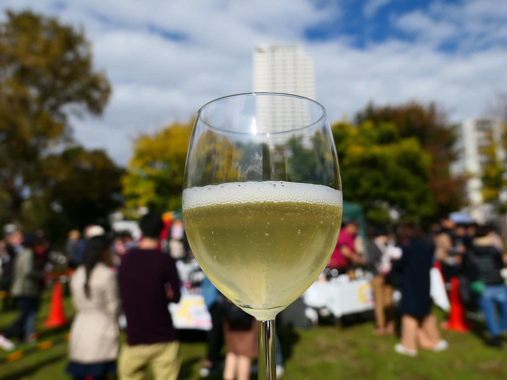 『大阪ビオワインフェスタ 2017』に参加して美味しいビオワインと料理を堪能しました!