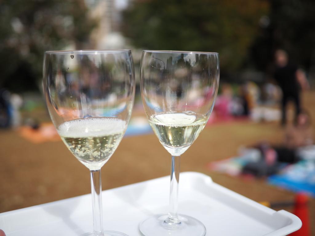『大阪ビオワインフェスタ 2018』に参加して美味しいビオワインと絶品料理の数々を堪能しました!